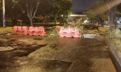 Mindefensa reporta desbloqueos de 14 vías en Cali