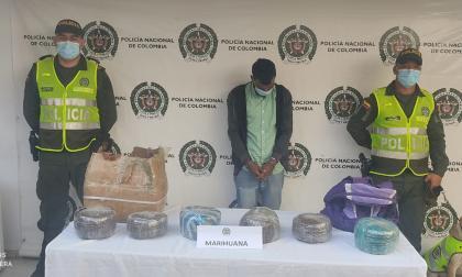Cayó coordinador logístico de Los Pachenca con 13 kilos de marihuana creepy