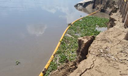 Cormagdalena monitorea el río para observar proceso erosivo en Salamina