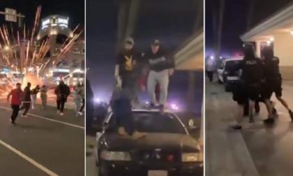 Arrestan a 149 personas que asistieron a fiesta ilegal en California