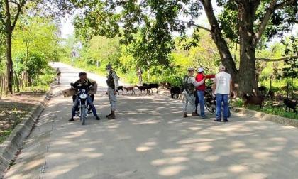 Policía e Infantería aumentan pie de fuerza y operativos en Chalán, Sucre