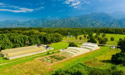 Proyecto de horticultura en Magdalena gana premio científico