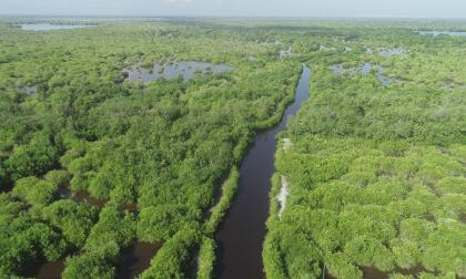 Propuesta de la Ciénaga Grande se presentará en conferencia de Cambio Climático