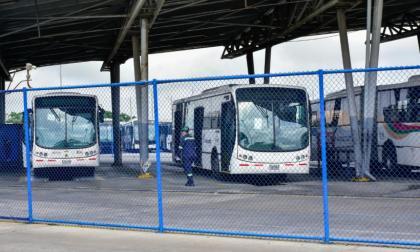 Transmetro autoriza a tres empresas de buses a cubrir rutas Murillo y Olaya Herrera