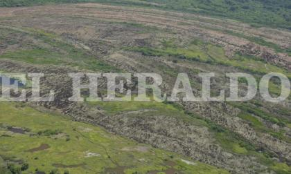 Cómo está la Isla de Salamanca tras incendio forestal