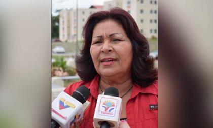 "Diputada chavista que pretendía ingresar al país ""representaba un riesgo"""