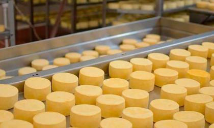 Plantas de lácteos de Colombia reciben luz verde para exportar a México
