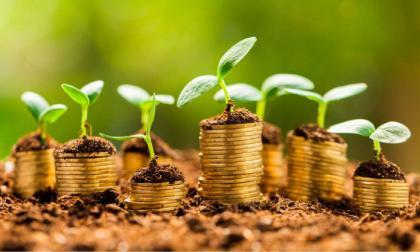 Colombia logra subastar $750 mil millones en bonos verdes