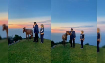 Nicolás Maduro conversó con un caballo en un evento en honor a Hugo Chávez