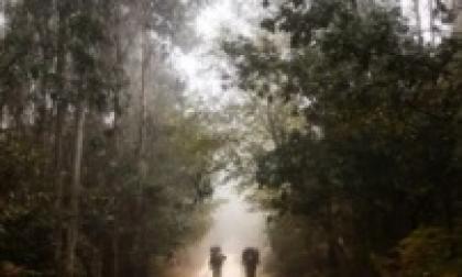 El camino sobre el destino   Columna de Ismael Cala