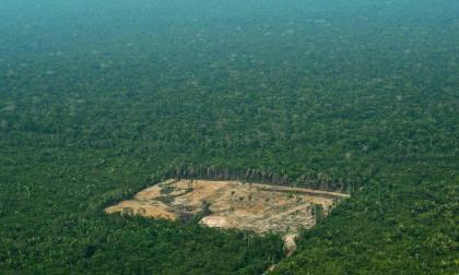 Amazonas y cambio climático