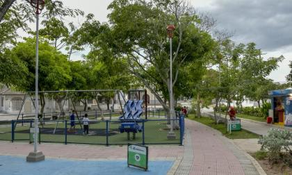 Así se ven distintos sectores arborizados de Barranquilla