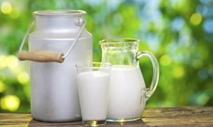 Dolió la salvaguarda lechera|| columna de José Félix Lafaurie