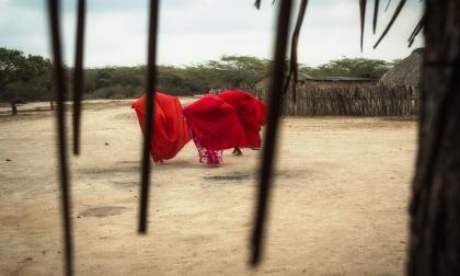 El posible reverdecer de La Guajira| columna de Álvaro López Peralta