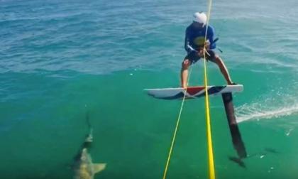 En video   El impactante momento en que kitesurfista choca con un tiburón
