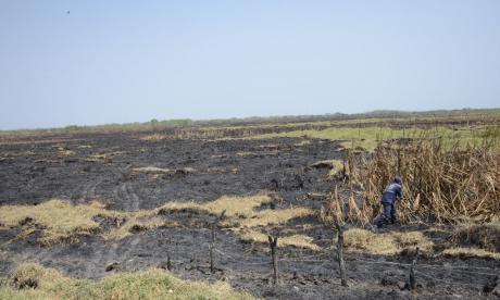 """Quemas en Campo de la Cruz: """"A agricultores se les habría salido de control"""", dice Gobernación"""