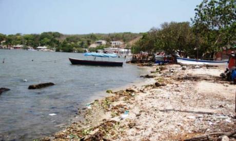Zona de Caño de Oro donde se evidencia  la tala de mangles.