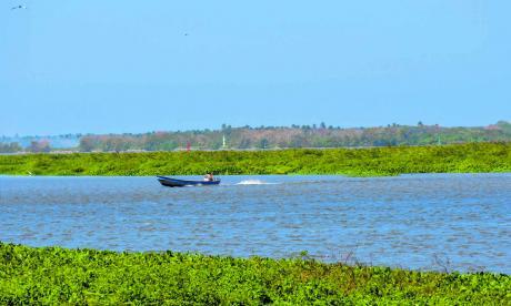 Islote amenaza el canal navegable del Río Magdalena