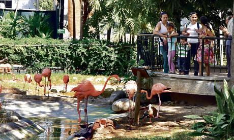Zoológico de Barranquilla está listo para la Semana Santa