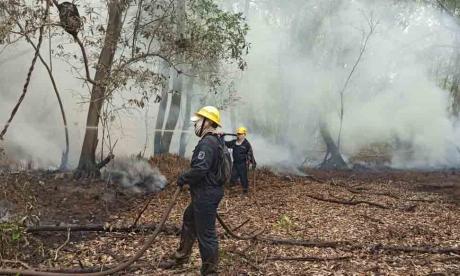 La admirable resistencia de los bomberos que apagan incendios en Salamanca