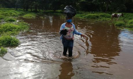 Cerca de 65 familias perdieron sus cultivos en La Conquista