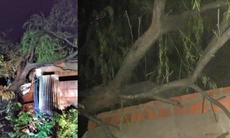 Lluvias y fuertes vientos dejan daños materiales en La Guajira