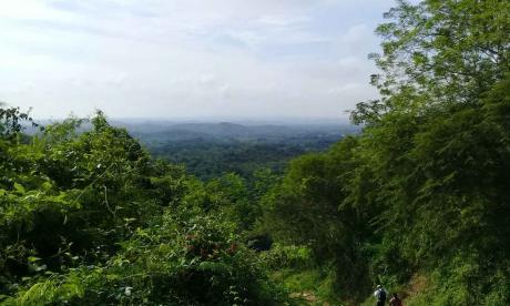 Cinco senderos principales llevan a una aventura ecológica en Luriza, situada a seis kilómetros de Usiacurí.