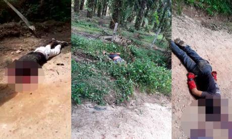 Los tres cuerpos presentaban múltiples impactos de bala.