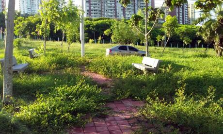 Residentes de Miramar piden mantenimiento de un parque