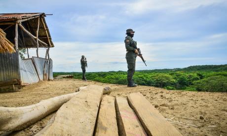 Montes de María, La Guajira, Cesar, Córdoba y Bolívar son los territorios más afectados en la contienda por las rutas y los cultivos ilegales.
