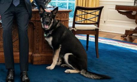 Major, el pastor de Joe Biden, no se adapta a la Casa Blanca