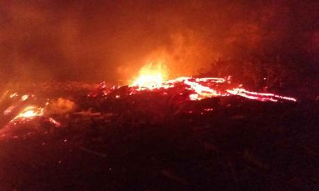 Incendio en palizada de Puerto habría sido provocado