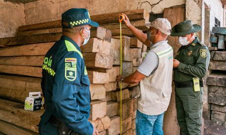 Aumentan controles en vías y comercializadoras para frenar tráfico de madera