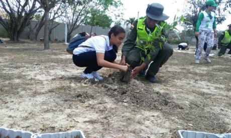 En imágenes   Policía Ambiental siembra 250 árboles en Barranquilla