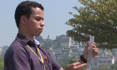 Un mosquito 'contagiado' para controlar el zika y el dengue en Brasil