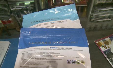 Uruguayos cumplen un año comprando marihuana en farmacias