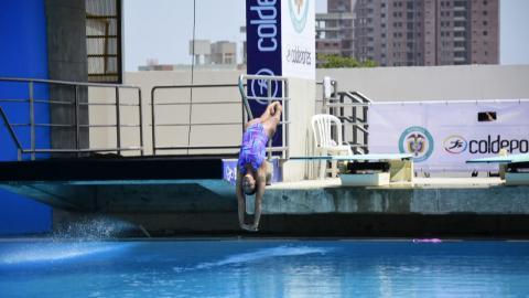 La colombiana Diana Pineda en la ronda preliminar de clavados un metro.