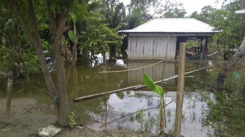 Zona rural del municipio de Sucre-Sucre tiene varias zonas inundadas.