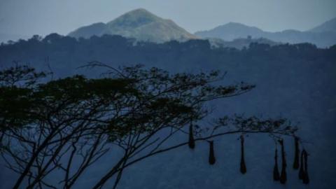 Imagen del sistema montañoso de la Sierra Nevada de Santa Marta, el más alto de Colombia.