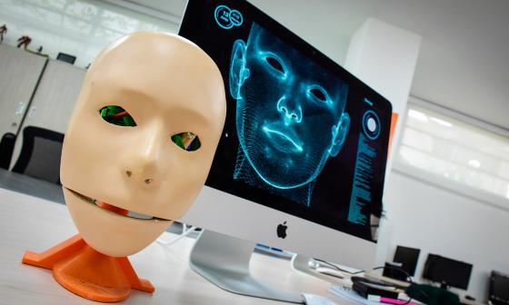 Mary, inteligencia artificial local contra la depresión
