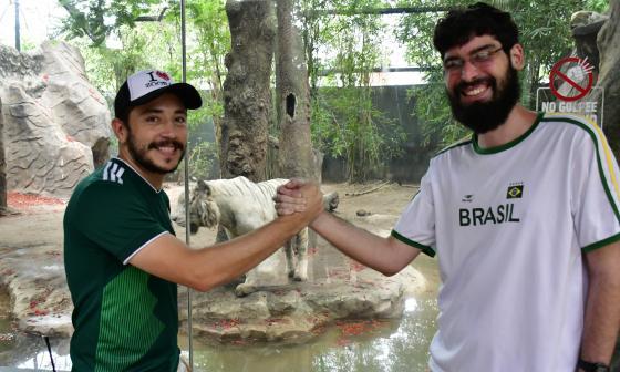 En el zoológico de Barranquilla se vivirá un duelo especial entre Brasil y México