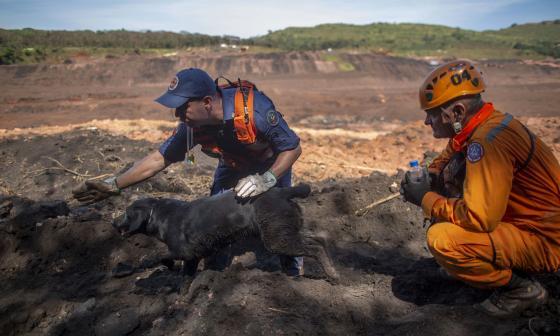 Sube a 115 el número de muertos por desastre minero en Brasil