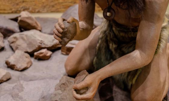 El fin del Neandertal podría estar vinculado a una baja de la fertilidad