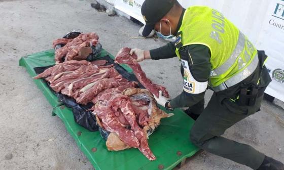 Incautan 70 kilos de carne en la Troncal del Caribe