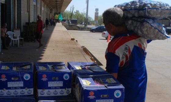 El ajo que es importado de China y que se comercializa en Granabastos.