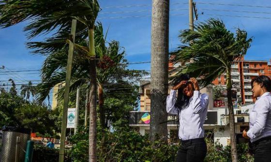 Distrito recomienda tomar medidas preventivas ante fuertes vientos