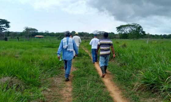 Familias víctimas de las AUC recibirán 200 hectáreas de tierra