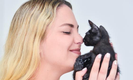 Adopción de mascotas, amor y responsabilidad para toda la vida
