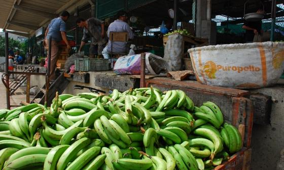 Inflación en julio en Colombia fue de 0%: Dane