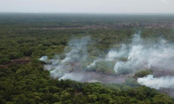 Parques Nacionales busca establecer las causas del incendio en Salamanca